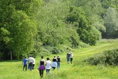 ecotherapy-peopel-walking-in-field