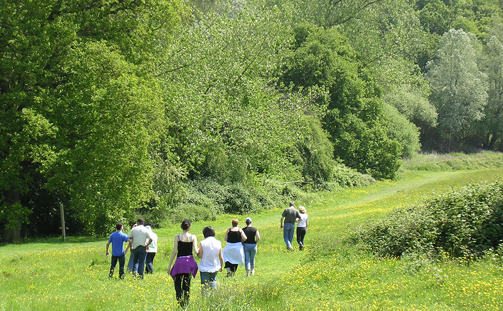 ecotherapy people walking in a field